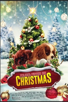 Project: Puppies for Christmas (2017)